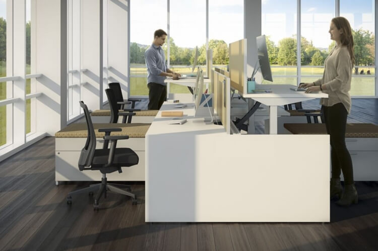 office with two people working using standing desks